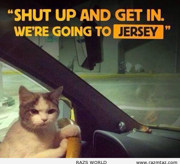 SHUT UP AND GET IN ..WE'RE GOING TO JERSEY